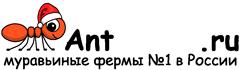 Муравьиные фермы AntFarms.ru - Севастополь